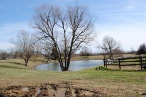edgehill_pond